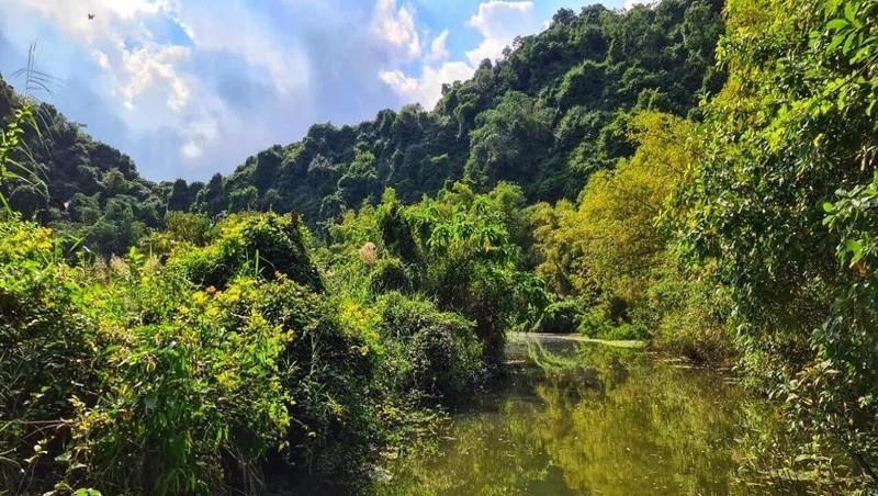 Vẻ đẹp hoang sở của Thung Nham làm du khách ngỡ ngàng và say đắm.