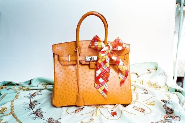 Một chiếc túi xách Hermès Birkin làm từ da đa điểu.