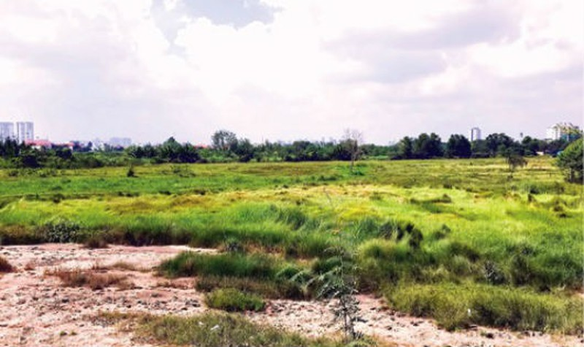 TPHCM: Mua đất 7 năm mới biết Chủ đầu tư chưa được giao đất