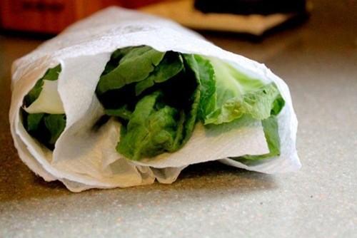 Kết quả hình ảnh cho Quấn lá rau diếp trong giấy ăn để tươi lâu
