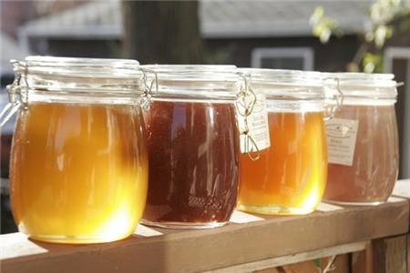 Kết quả hình ảnh cho Đựng mật ong trong lọ thủy tinh để tránh ô xi hóa