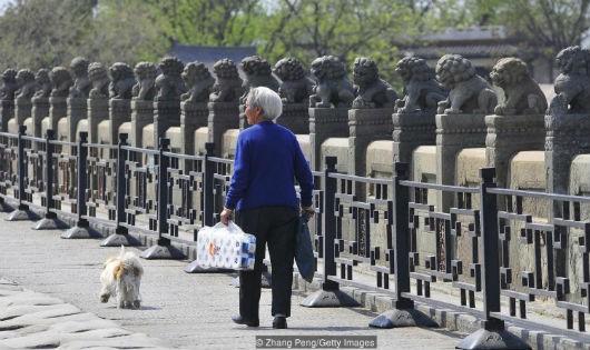 Với tuổi thọ trung bình là 83, người Nhật là một trong những quốc gia có lượng dân cư trường thọ nhất thế giới