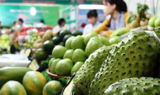Cần Thơ: Sắp diễn ra Hội chợ Nông nghiệp quốc tế Việt Nam 2017