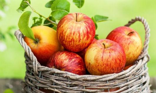 Làm sao chọn táo ngon, không hóa chất