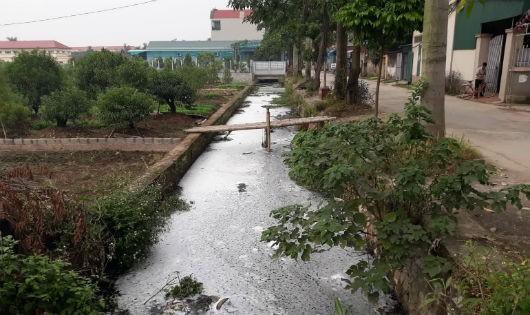 Hà Nội:Người dân Vân Tảo khốn khổ vì mương ô nhiễm