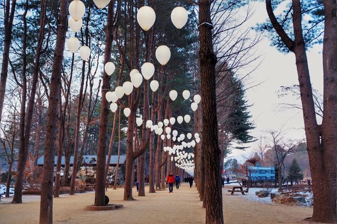 Bộ ảnh Hàn Quốc mùa đông làm xao xuyến chàng trai Việt - 1
