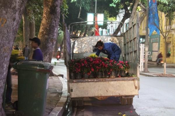 Còn những công nhân đang miệt mài xếp những chậu hoa