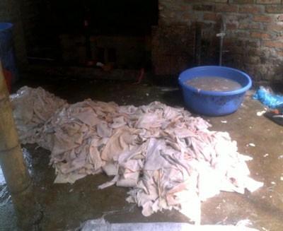 Mỗi ngày hàng tạ bì lợn thối được chế biến tại đây