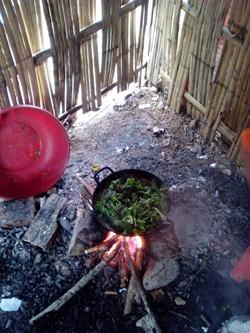 Không có bếp, các em phải bắc những viên gạch, hòn đá tạm làm kiềng, lên rừng lấy củi về nhóm bếp nấu cơm trong nhà tạm đổ nát, lụp xụp.