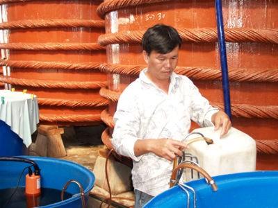 Có tới 170 triệu lít nước mắm Phú Quốc là hàng giả, hàng nhái