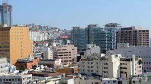 Một khu nhà cao tầng tại Busan. Ảnh: Internet