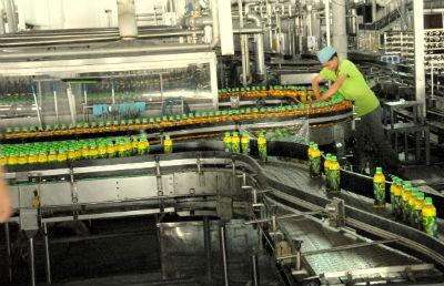 Dây chuyền sản xuất Trà xanh không độ của THP