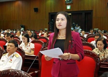 Đại biểu Quốc hội phát biểu ý kiến về Dự thảo Luật Việc làm
