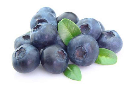 Blueberry (có trong OTIV) chứa nhiều hoạt chống thiên nhiên quý có tác dụng chống gốc tự do, ngăn ngừa các bệnh mạch máu não.