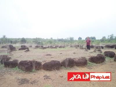 Khu vực Bãi Tiên với nhiều hòn đá sắp xếp theo hình thù kỳ lạ
